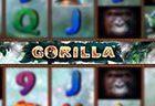 играть в автомат Gorilla бесплатно