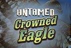 играть в автомат Untamed Crowned Eagle бесплатно